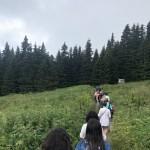 13 дорога на Витошу